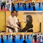A través del 2017 Seminario Jinyoung Ssangkum Ryu en México